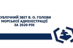 Zvit_2020-01