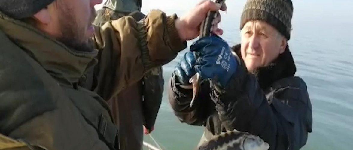 Прикордонники Бердянського загону на Азові двічі за добу виявили браконьєрські сітки