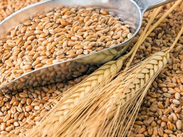 Україна має 6-місячний запас пшениці, тож обмежувати експорт непотрібно – Шмигаль