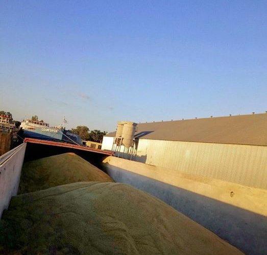 ТОВ «Грейн-Трансшипмент» розпочало перевантаження ячменю на водний транспорт з річних елеваторів