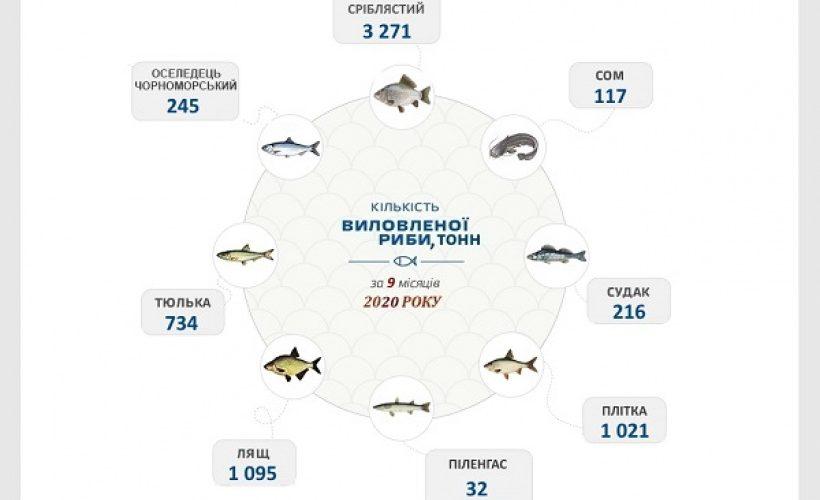 За 9 місяців поточного року українські промислові рибалки виловили майже 20 тис. тонн водних біоресурсів, – Держрибагентство