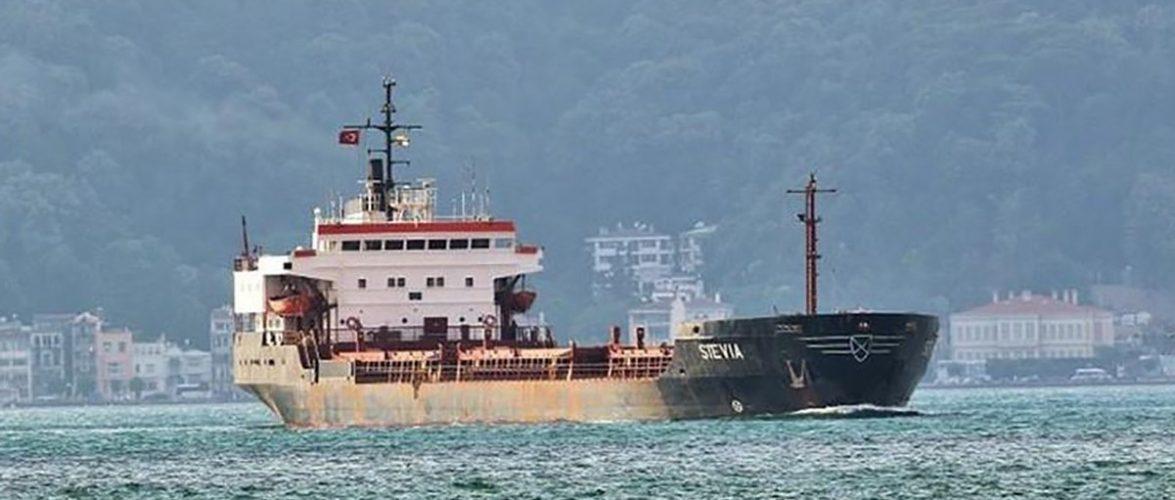 У МЗС підтвердили захоплення піратами шістьох українських моряків із судна Stevia біля берегів Нігерії