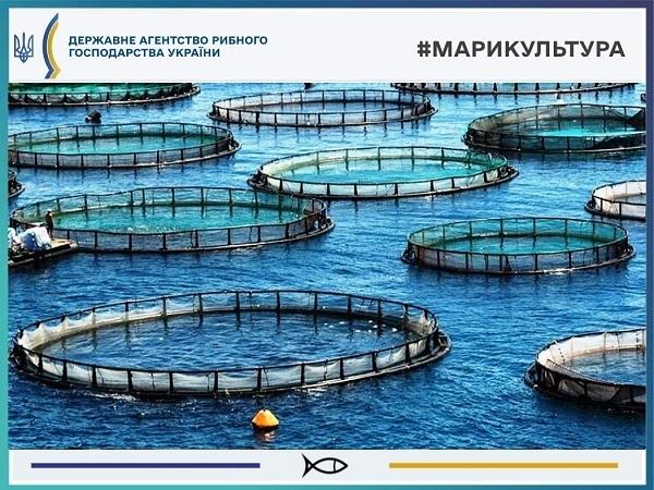 Держрибагентство розробило проєкт про надання в оренду акваторії моря для цілей марикультур
