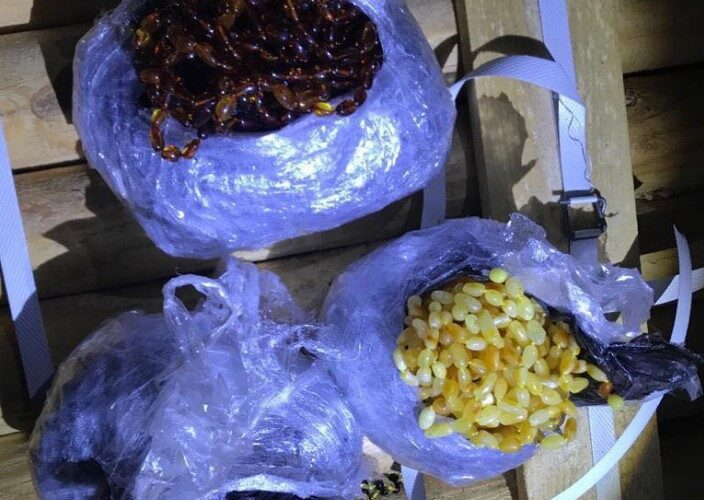 На паромній переправі Чорноморська знайшли 5 кг контрабандного бурштину
