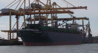 На другому причалі ДП «МТП «Чорноморськ» почнеться завантаження тріски на турецьке судно
