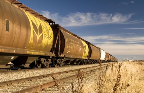 «Укрзалізниця» не може забезпечити планування відвантаження зерна в напрямку морських портів – Ткачов