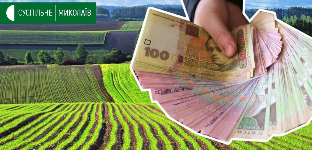 Ринок землі: на Миколаївщині за три місяці уклали понад 700 угод купівлі-продажу